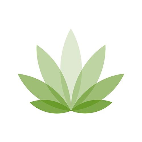 Icon - Cannabis Healing
